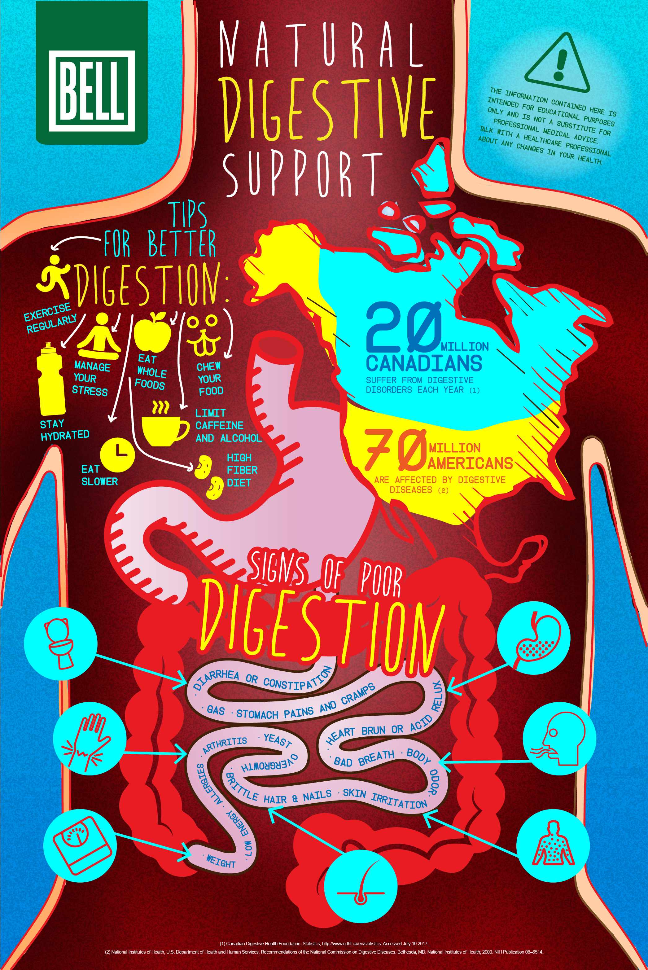 natural digestive health infographic